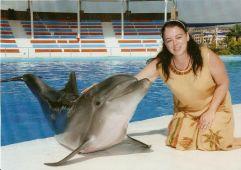 Plejádi Delfintestvér