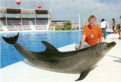 Arcturusi Delfintestvér